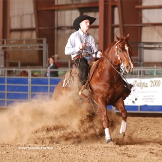 Equine Events Set the Stage for 2014 Black Hills Stock Show®