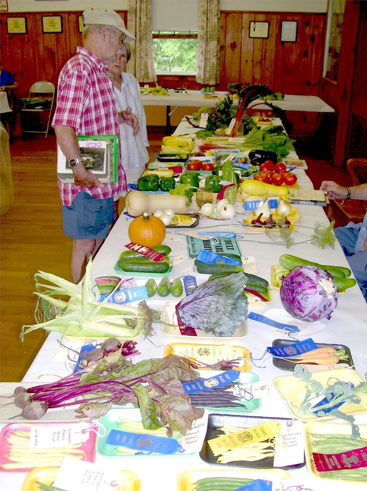Judging the vegetables at the Winchester Grange Fair and Flea Market
