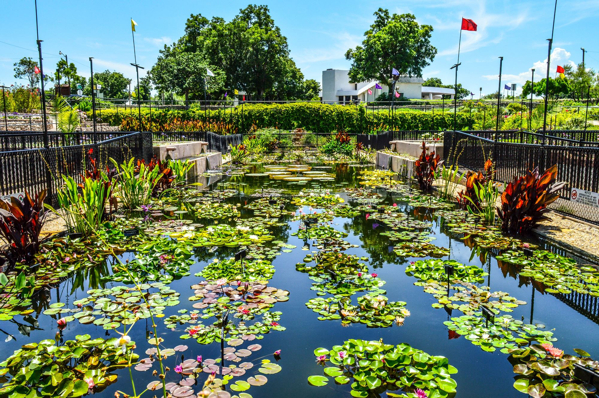 San Angelo, Texas: Your Cure for Spring Fever and the Summertime Blues