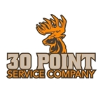 30 Point