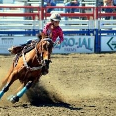 Minetti Mini Rodeo